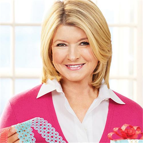Martha Stewart: Martha Stewart Today's Special: New Craft Punches
