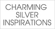 Charming Silver Inspirations
